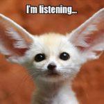 kuuntelun tasot